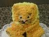 Mainská mývalí kočka :)